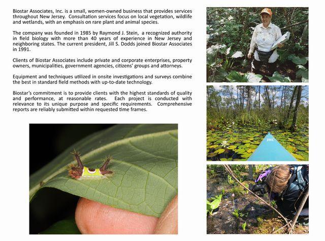 About Biostar page2.jpg